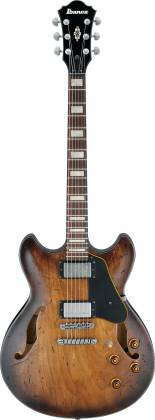 Ibanez ASV10A-TCL-d Artcore Vintage Series 6 String Hollow Body Guitar in Tobacco Burst Low Gloss Finish (discontinued clearance)  (Prior Year Model) Product Image 2