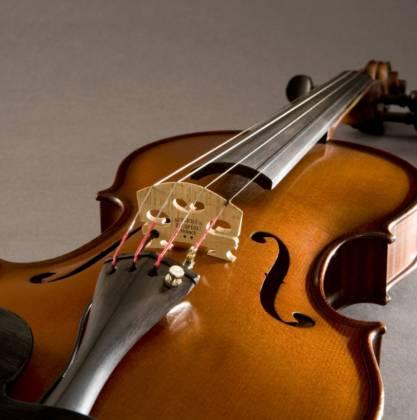 Fishman PRO-V30-0VI Concert Series V-300 Violin Pickup Product Image 3