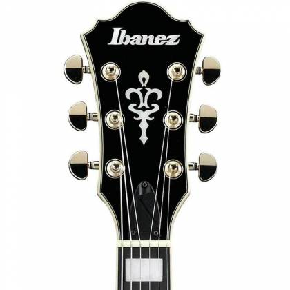 Ibanez AS93ZW-NT Artcore Expressionist 6 String RH Zebrawood Semi-Hollowbody Electric Guitar-Natural Product Image 5