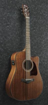 Ibanez AW54-OPN Artwood Series 6 String RH Acoustic Guitar-Open Pore Natural Product Image 2