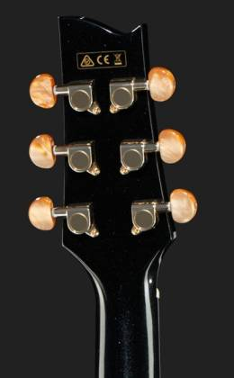 Ibanez EP5-BP Euphoria Series Steve Vai Signature 6 String RH Acoustic Electric Guitar-Black Pearl High Gloss Product Image 7