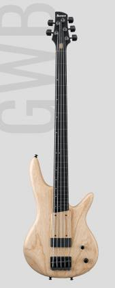 Ibanez GWB1005 NTF Gary Willis Signature 5 String RH Fretless Electric Bass with Case-Natural Flat Product Image 2