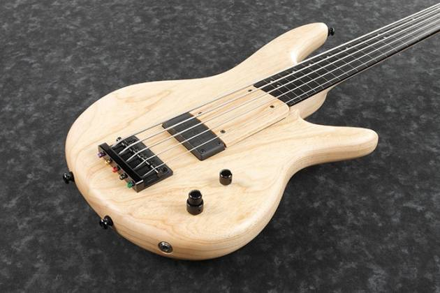 Ibanez GWB1005 NTF Gary Willis Signature 5 String RH Fretless Electric Bass with Case-Natural Flat Product Image 5