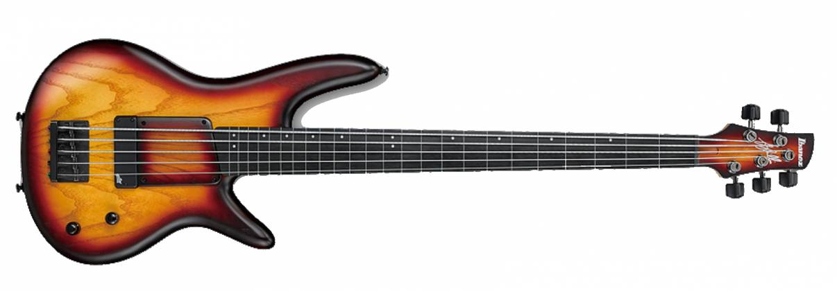 Ibanez GWB20TH-TQF Limited Edition Gary Willis Signature Fretless 5-String RH Electric Bass-Tequila Sunrise Flat Product Image 2