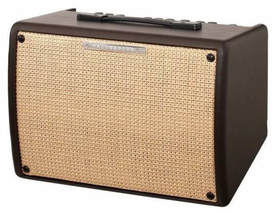 Ibanez T30II Troubadour 30 Watt Acoustic Guitar Amplifier Product Image 2