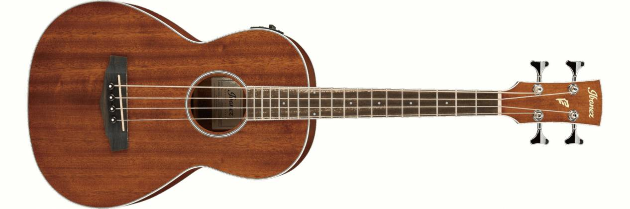 Ibanez PNB14E-OPN 4 String RH Acoustic Electric Bass - Open Pore Natural Product Image 2