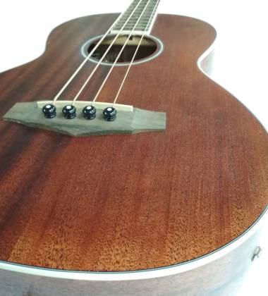 Ibanez PNB14E-OPN 4 String RH Acoustic Electric Bass - Open Pore Natural Product Image 4