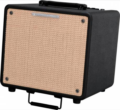 Ibanez T80-N-d 10 inch 80W Troubadour Acoustic Guitar Combo Amplifier (discontinued clearance) Product Image 2