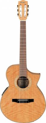 Ibanez EWN30SYE/NT Classical Guitar (discontinued clearance) Product Image 2