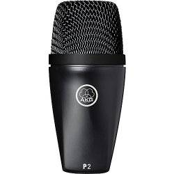 AKG P2 Dynamic Bass Instrument Microphone Product Image