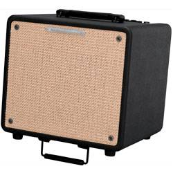 Ibanez T80-N-d 10 inch 80W Troubadour Acoustic Guitar Combo Amplifier (discontinued clearance) Product Image